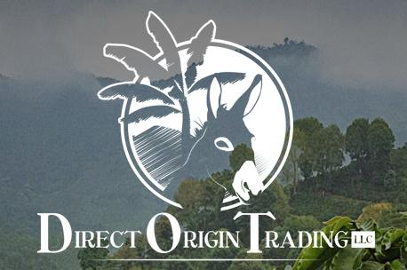 Direct Origin
